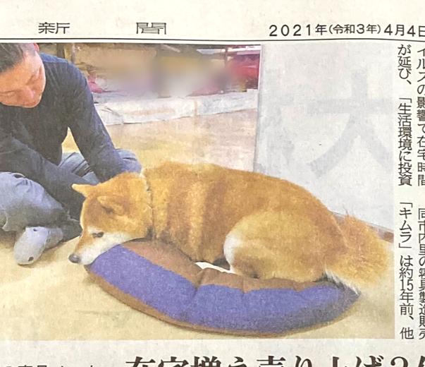 京都新聞さん写真