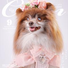 ラグジュアリーなドッグファッション誌Cuun9月号